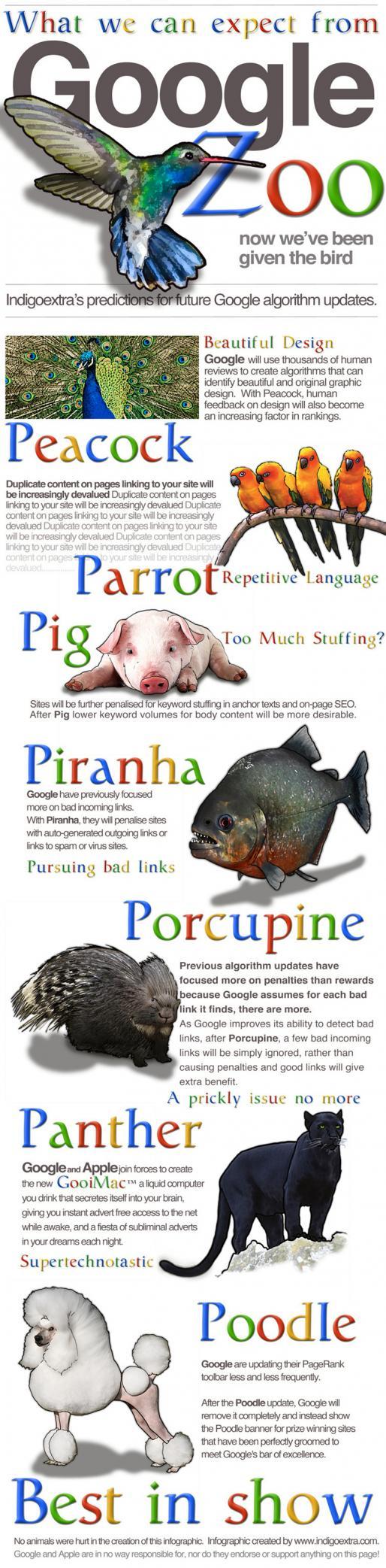 Educational digital marketing infographic - Google zoo