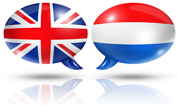 English to Dutch translation