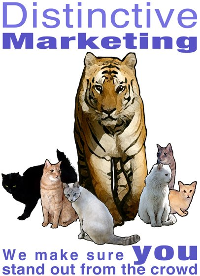 SEO and Marketing Consultation
