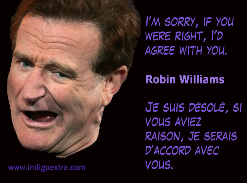 Robin Williams - Image for Social Media Marketing