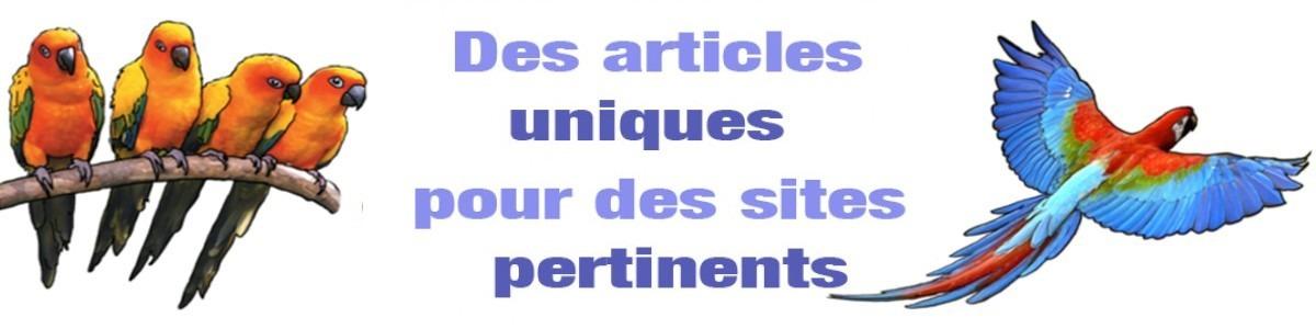 Articles invité