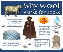 Why wool works for sock