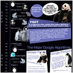 Marketing infographics showing Google Algorithm Updates