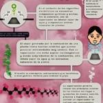 Vaporiser Spanish infographic