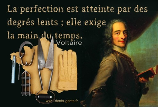 Inspirational Social Media Image Voltaire quote perfection attained