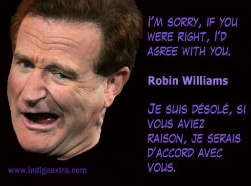Robin Williams - Image for Social Media Marketing