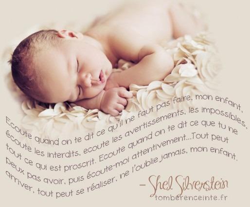 Shel Silverstein quotagraphic en Français plus image.
