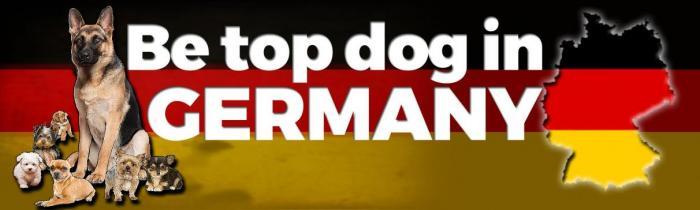 German SEO