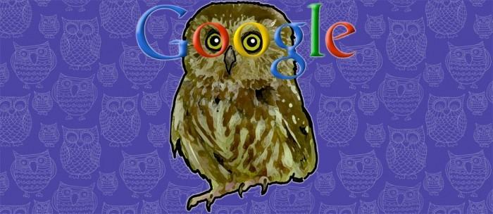 Google Owl